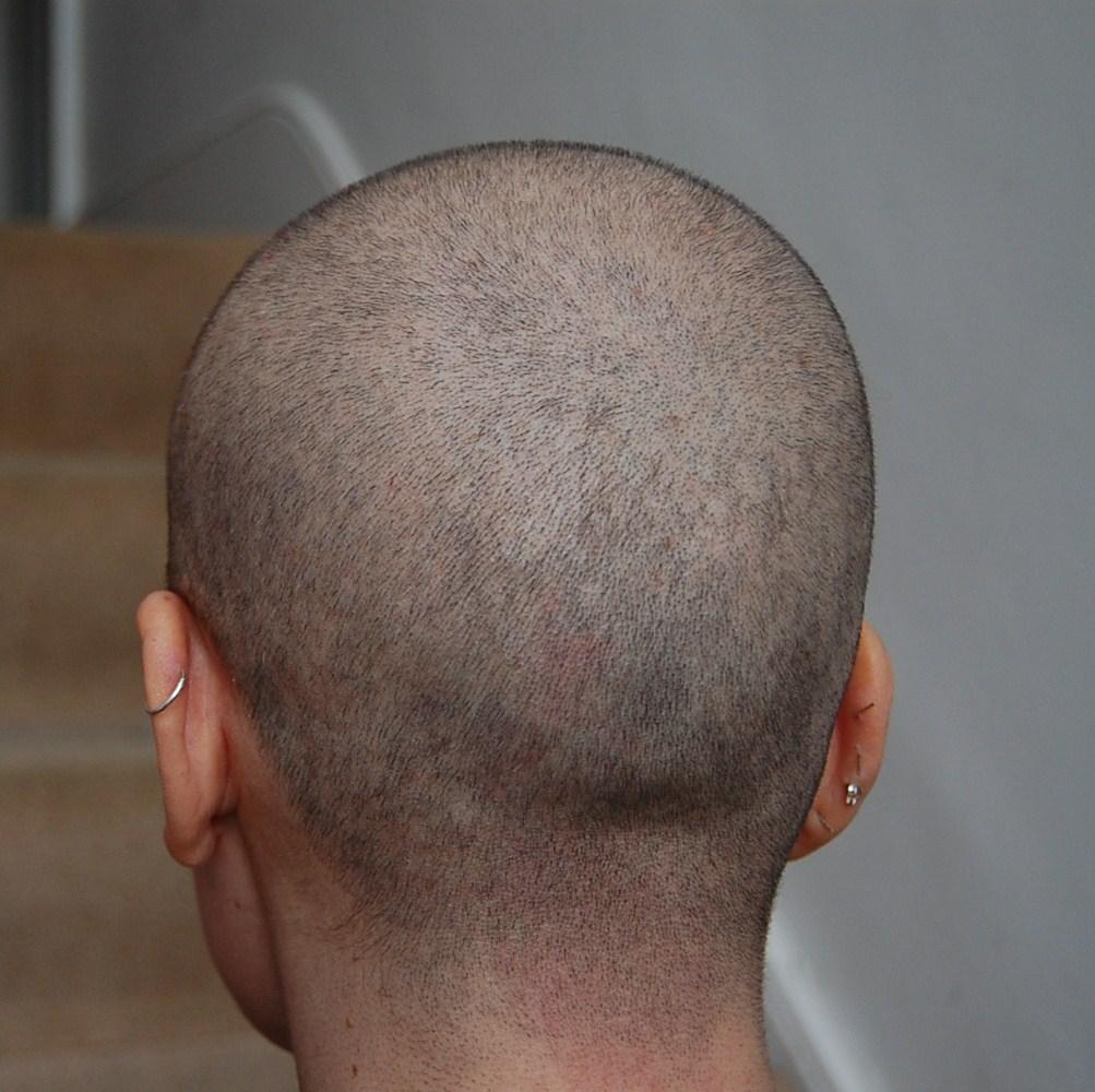 Back head shaved, la petite mort plural